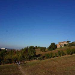 언덕 산책
